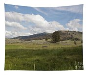 Lamar Valley No. 2 Tapestry