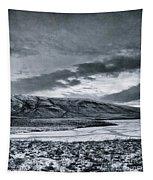 Land Shapes 12 Tapestry by Priska Wettstein