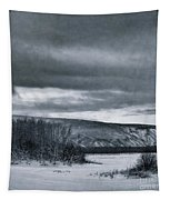 Land Shapes 14 Tapestry by Priska Wettstein
