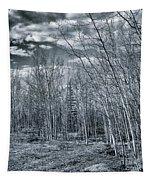Land Shapes 22 Tapestry by Priska Wettstein