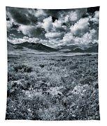 Land Shapes 24 Tapestry by Priska Wettstein