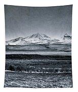 Land Shapes 7 Tapestry by Priska Wettstein