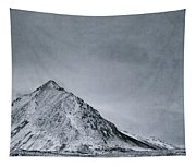 Land Shapes 9 Tapestry