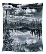 Landshapes 29 Tapestry by Priska Wettstein