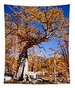 Larch Tree Frames Prusik Peak Tapestry