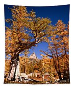 Larch Trees Frame Prusik Peak Tapestry