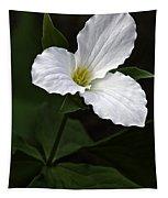 Large Flowered Trillium Tapestry