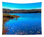 Late Autumn On Loon Lake Tapestry
