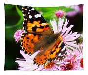 Late Summer Painted Lady Tapestry