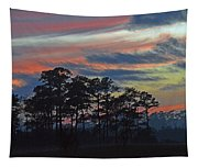 Late Sunset Trees In The Mist Tapestry