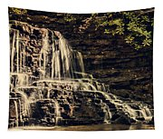 Laurel Run Falls Tapestry