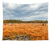 Laurel Summit State Park Bog Tapestry
