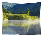 Laurentian Summer Morning Tapestry