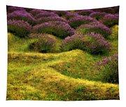 Lavender Fields Tapestry
