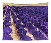 Lavender Study - Marignac-en-diois Tapestry