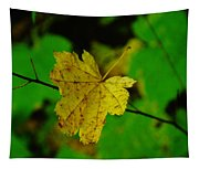 Leaf Caught On A Branch Tapestry