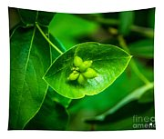 Leaf With Seeds Tapestry