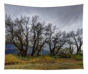 Leafless Trees Tapestry