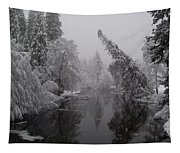Leaning Tree Tapestry