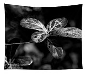 Leaves - Bw Tapestry