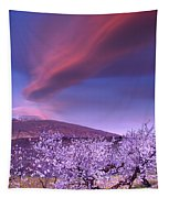 Lenticular Clouds Over Sierra Nevada Tapestry