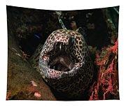 Leopard Moray Tapestry