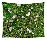 Lesser Stitchwort Near Lobster Cove In Gros Morne Np-nl Tapestry