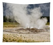 Letting Off Steam - Yellowstone Tapestry