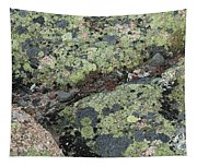 Lichen And Granite Img 6187 Tapestry
