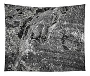 Lichen On The Whistlers - Black And White Tapestry