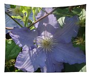 Light Blue Clematis Tapestry