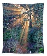 Light Shine Tapestry