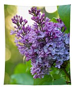 Lilac Heaven Tapestry