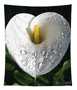 Lily After The Rain Tapestry