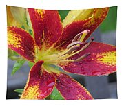 Lily In My Patio Tapestry