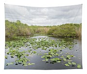 Lily Pads Floating On Water, Anhinga Tapestry