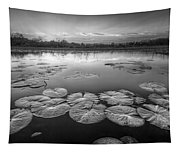 Lily Pads In The Glades Black And White Tapestry