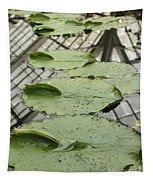 Lily Pads With Reflection Of Conservatory Roof Tapestry