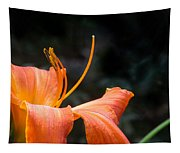Lily Showing Pistil And Anthers Tapestry