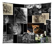 Lion Collage Tapestry
