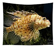 Lionfish Searching For Its Prey Tapestry