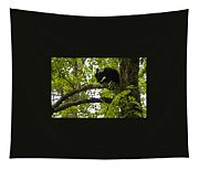Little Bear Cub In Tree Cades Cove Tapestry