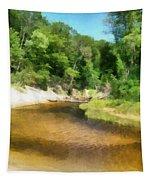 Little Black Creek - Hoffmaster State Park Tapestry