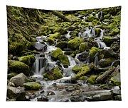 Little Cascades Tapestry