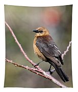 Little Grackle In A Big World Tapestry
