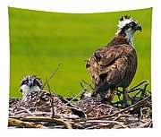 Little Osprey Tapestry