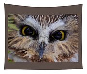Little Owls Tapestry