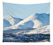 Little Peak Tapestry
