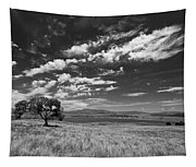 Little Prarie Big Sky - Black And White Tapestry