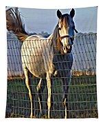 Little White Pony Tapestry